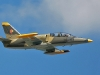 l-39-florida-airborne.jpg