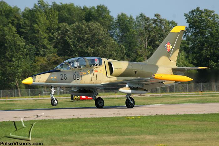 L-39 Albatros Jet Rides in Tampa, Florida | FlyFighterjet com